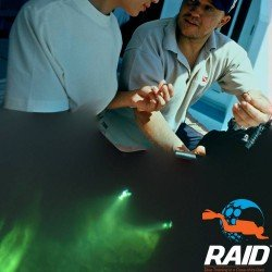 RAID Night and Limited Visibility Instructor