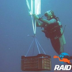 RAID Search and Recovery Diver
